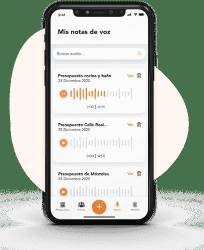 Añade notas de audio